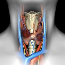 Тиреоїдектомія 5