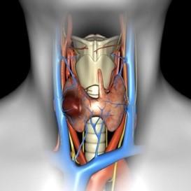 Фолікулярна неоплазія щитовидної залози
